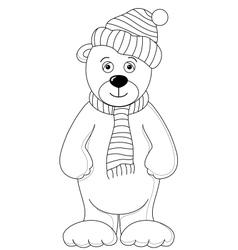 teddy vector image vector image