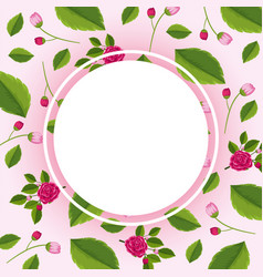 border template with pink roses vector image