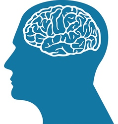 Brain in Head vector image