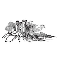 Castle vintage vector