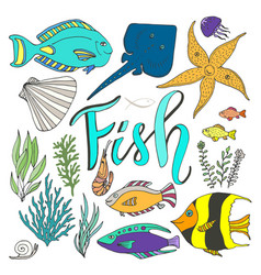 fish set hand drawn marine with colorful fishes vector image