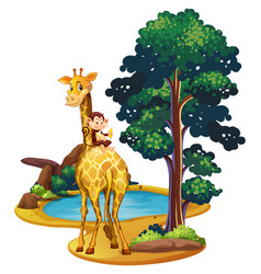 Giraffe and monkey by the pond vector