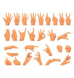 Various hands gestures vector