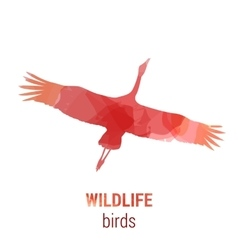 Wildlife banner - bird stork vector