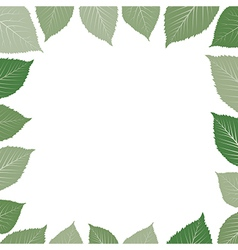 frame with green leaf vector image vector image