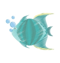 hand drawing green fish marine species bubbles vector image