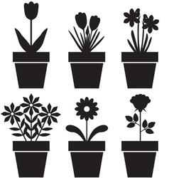 Pot plants set vector image vector image