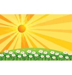 A garden of white flowers above the hills vector
