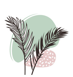 abstract organic shapes with tropical plants vector image