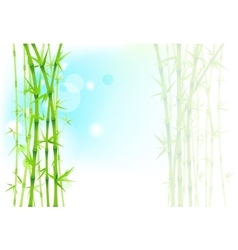 Bamboo asian background vector