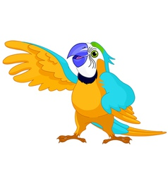 Cartoon parrot vector