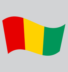 flag of guinea waving on gray background vector image