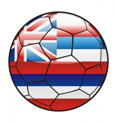 Hawaii flag on soccer ball vector