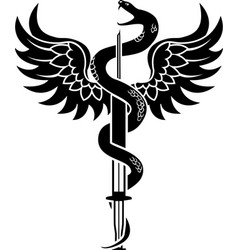 new medical symbol a snake coiled around a syring vector image