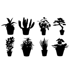 set of potted plant silhouettes vector image