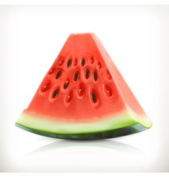 Slice of watermelon summer fruit icon vector