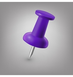 Purple push pin isolated vector image