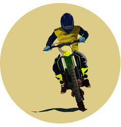racer and sport motocross bike icon vector image