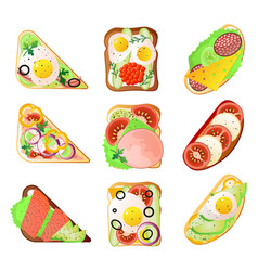 set different type sandwich for lunch box vector image