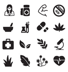 silhouette herb icons vector image