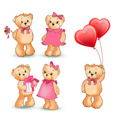 teddy bear collection of objects vector image