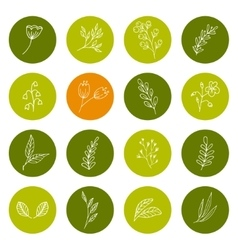 Set of hand drawn floral icons vector image