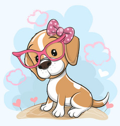 Cartoon dog beagle with a bow and glasses on a vector
