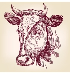 Cow hand drawn llustration vector