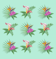 plants and flowers for background flat vector image