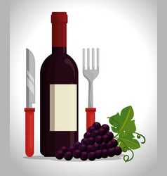 red wine bottle and grapes vector image