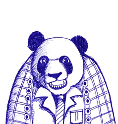 Sketch of panda bear vector