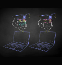 Student owl sitting on laptop vector