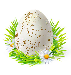 white egg with spots on grass vector image