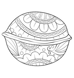 Adult coloring bookpage a cute nut with ornaments vector