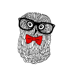 Cute owl pet in retro frame glasses isolated on vector