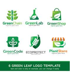 Green leaf logo template vector