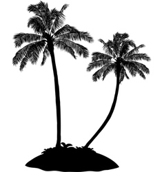 Palm tree silhouette on white vector