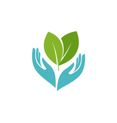 Plant or leaves in hands symbol health vector