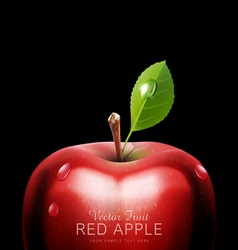 Red apple close-up with drops on a black backgroun vector