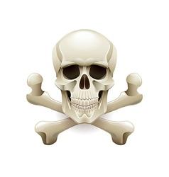 Skull crossbones isolated on white vector image vector image