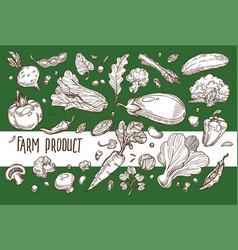farm product vegetable harvest organic food vector image