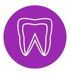 Molar tooth line icon vector