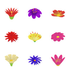 Paper flower icons set isometric style vector