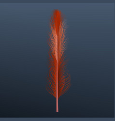 red abstract feather icon realistic style vector image