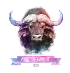 Set of watercolor Cute bull vector