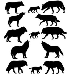 Silhouettes of wolves and wolf-cubs vector