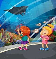Two girls looking at stingray at the aquarium vector image
