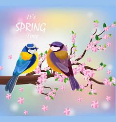 birds couple on a blossom cherry flowers vector image vector image