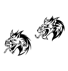 Snarling bobcat or mountain lion vector image vector image