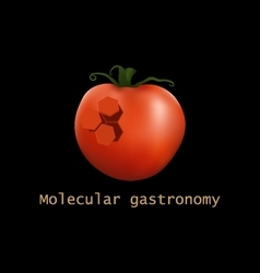 Stylized tomato structure Molecular gastronomy vector image vector image